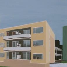 gebouw-portret Dokter de Liefdestraat